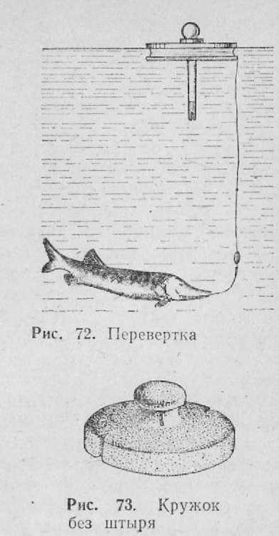 ловля риби кружками